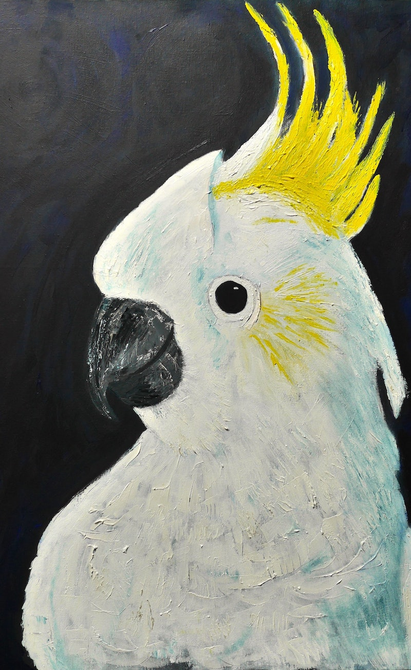 white cockatoo by beverley myers paintings for sale bluethumb