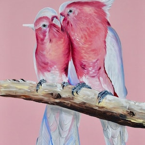 (CreativeWork) Major cute Major Mitchells  by HEYLIE MORRIS. arcylic-painting. Shop online at Bluethumb.