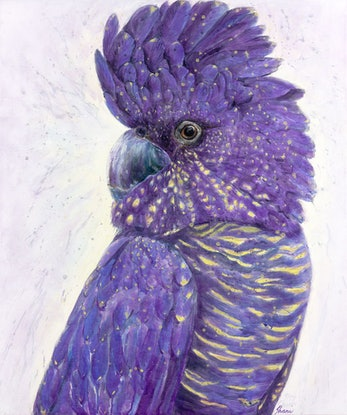 (CreativeWork) Violet Crumble Ed. 3 of 50 by Shani White. Print. Shop online at Bluethumb.