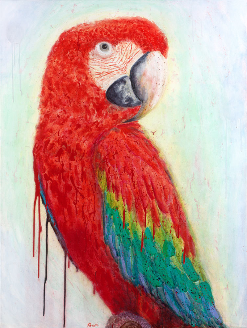 (CreativeWork) Big Red Ed. 3 of 50 by Shani White. Print. Shop online at Bluethumb.