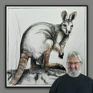 (CreativeWork) Yellow Footed Rock Wallaby No.2 in Portrait of Kangaroo Series 2 by Michael Chorney. drawing. Shop online at Bluethumb.