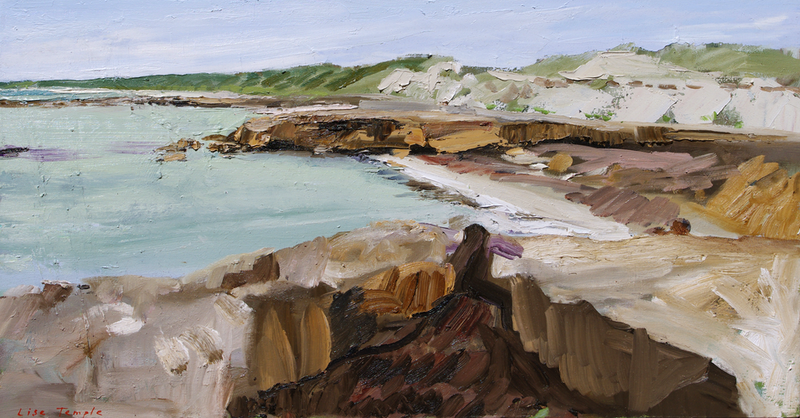 (CreativeWork) Barkers Rocks, Yorke Peninsula by Lise Temple. Oil Paint. Shop online at Bluethumb.