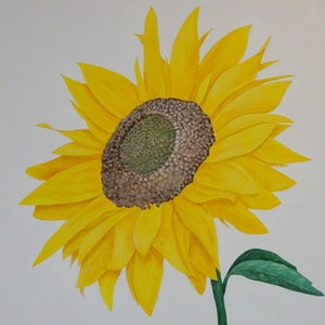 (CreativeWork) Sunflower by Julie-Anne Gatehouse. arcylic-painting. Shop online at Bluethumb.