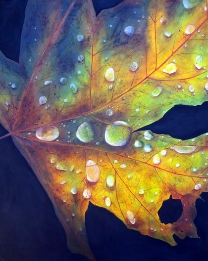 (CreativeWork) MOURNING DEW by Colleen Bohonis. arcylic-painting. Shop online at Bluethumb.