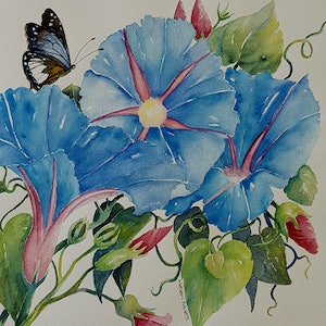 (CreativeWork) Morning Glories by Helen Miles. watercolour. Shop online at Bluethumb.