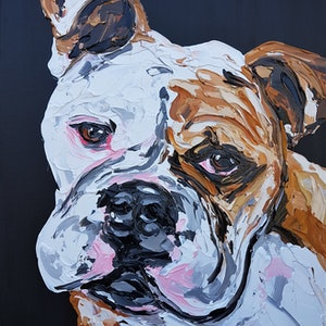 (CreativeWork) Bulldog by Lisa Fahey. arcylic-painting. Shop online at Bluethumb.