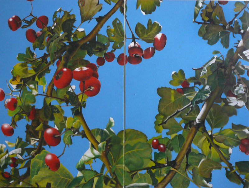 "(CreativeWork) ""berries bright and scarlet"" by Claire Souter. oil-painting. Shop online at Bluethumb."