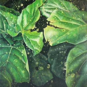 (CreativeWork) leaf #17 by Claire Souter. oil-painting. Shop online at Bluethumb.