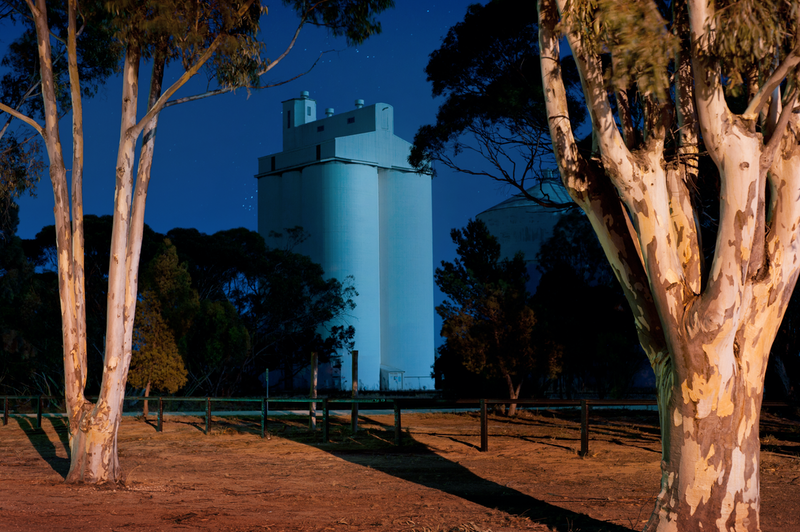 (CreativeWork) Queen of the Mallee by Alex Frayne. photograph. Shop online at Bluethumb.