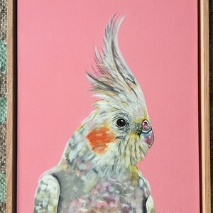 (CreativeWork) Pink Cockatiel  by HEYLIE MORRIS. arcylic-painting. Shop online at Bluethumb.