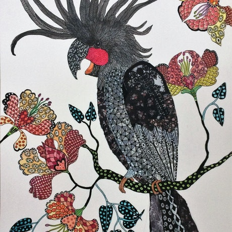 (CreativeWork) Fly away with me: Palm Cockatoo by Jude Willis. Mixed Media. Shop online at Bluethumb.