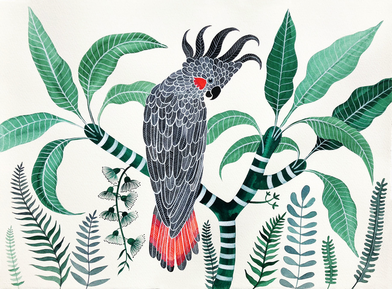 (CreativeWork) Black Cockatoo in Emerald Forest by Sally Browne. watercolour. Shop online at Bluethumb.