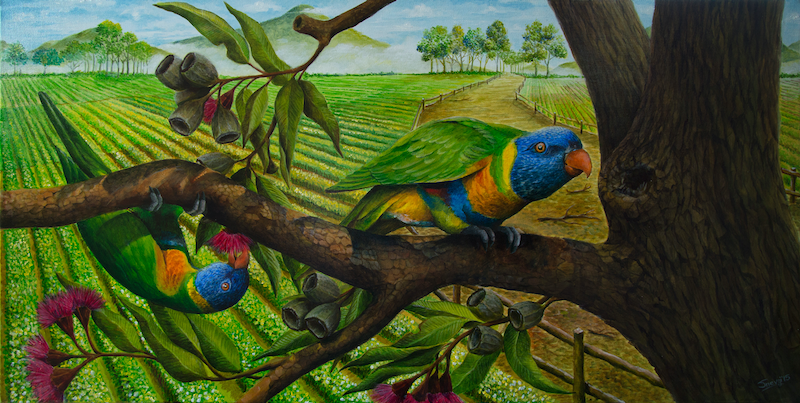 (CreativeWork) Lorikeets by Swapnil Nevgi. arcylic-painting. Shop online at Bluethumb.