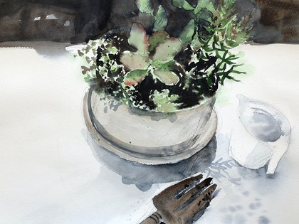 (CreativeWork) My Succulents by Jill Bryant. watercolour. Shop online at Bluethumb.