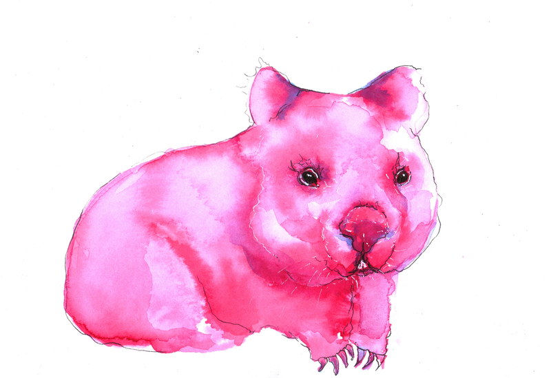 (CreativeWork) Wombat Quick Study in Ink and Pen by Linda Hammond. other-media. Shop online at Bluethumb.