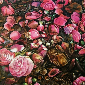 (CreativeWork) Things Fallen - Camellias by Karena Wynn-Moylan. oil-painting. Shop online at Bluethumb.