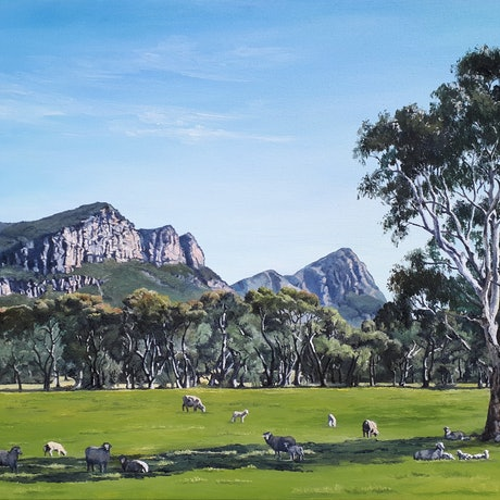 (CreativeWork) The Grampians, Vic by M.A. Hobbs. Oil Paint. Shop online at Bluethumb.