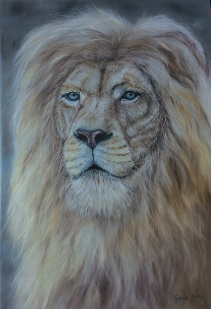 (CreativeWork) White Lion by Gabriele Phillis. other-media. Shop online at Bluethumb.