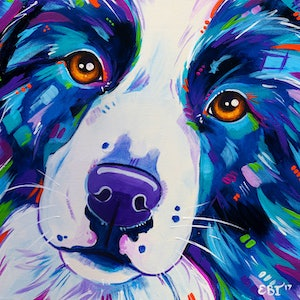 (CreativeWork) Collie Close Up - Border Collie Dog Acrylic Painting by Eve Izzett. arcylic-painting. Shop online at Bluethumb.