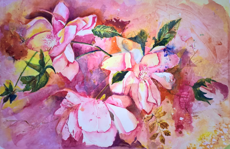 (CreativeWork) MAGNOLIAS IN THE GARDEN by Frances Swan. Watercolour Paint. Shop online at Bluethumb.