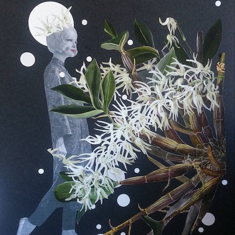 (CreativeWork) 'Orchid Series 2 - #1' framed by Karen Coull. Mixed Media. Shop online at Bluethumb.
