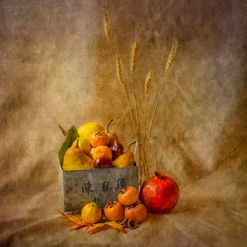 (CreativeWork) Autumn Harvest #3 by Shirley Steel. photograph. Shop online at Bluethumb.