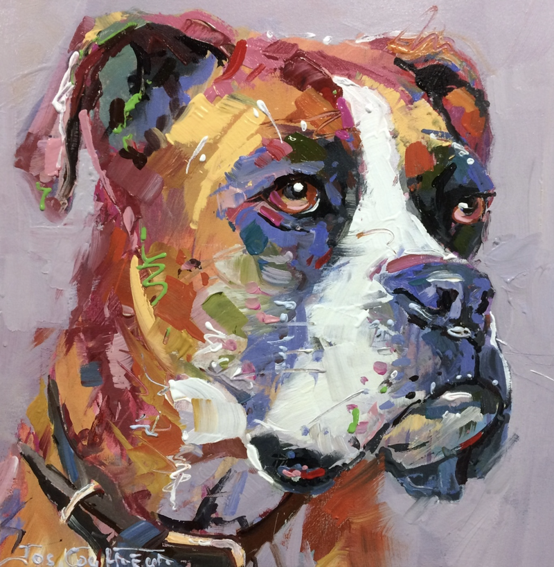 (CreativeWork) Shuz the Boxer by Jos Coufreur. arcylic-painting. Shop online at Bluethumb.