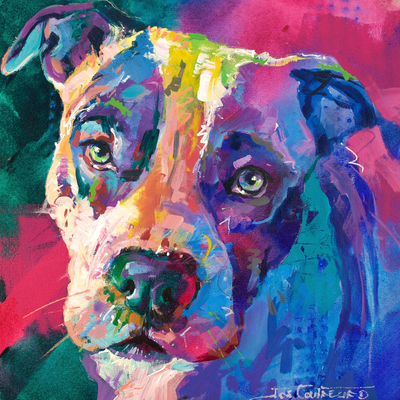 (CreativeWork) Bandit the American Staffordshire Terrier by Jos Coufreur. arcylic-painting. Shop online at Bluethumb.