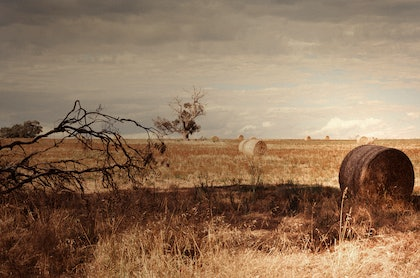 (CreativeWork) Sub Goyder's (iv) by Alex Frayne. photograph. Shop online at Bluethumb.
