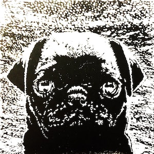 (CreativeWork) Pug Puppy Love  - Certificate of Authenticity  Ed. 3 of 20 by Natasha Scott. print. Shop online at Bluethumb.