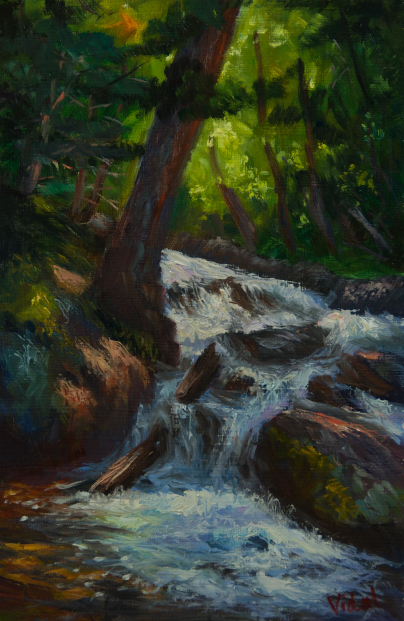 (CreativeWork) A tranquil hidden waterfall by Christopher Vidal. oil-painting. Shop online at Bluethumb.