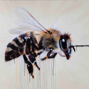 (CreativeWork) Cream Bee by Dan Wenn. other-media. Shop online at Bluethumb.