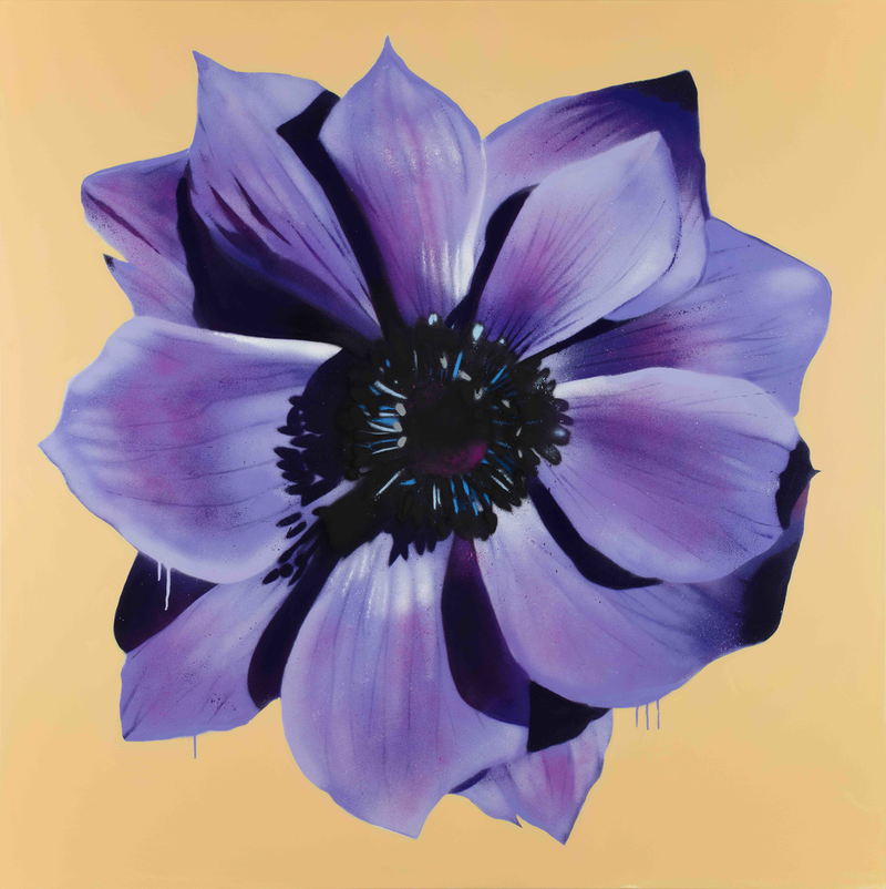 (CreativeWork) Public Anemone by Dan Wenn. mixed-media. Shop online at Bluethumb.