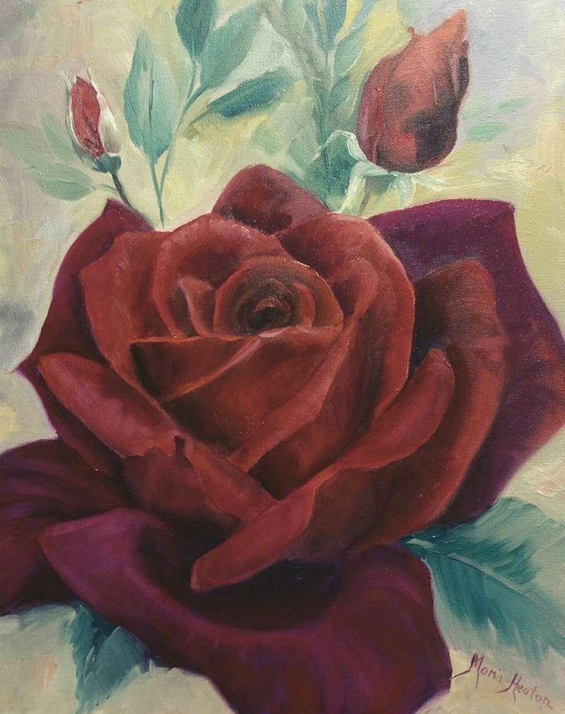 (CreativeWork) Papa meilland Rose by Maria Heaton. oil-painting. Shop online at Bluethumb.