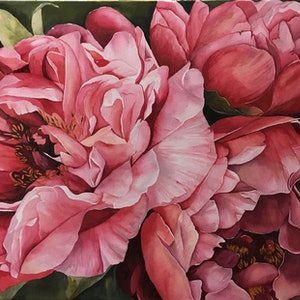 (CreativeWork) Coral Charm Peonies by Julie Christensen. watercolour. Shop online at Bluethumb.