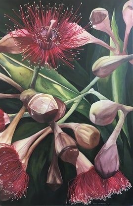 (CreativeWork) Flowering Gumnuts 1 by Julie Christensen. Watercolour Paint. Shop online at Bluethumb.