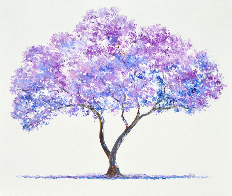 Jacaranda Tree By Jan Matson