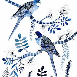 (CreativeWork) Indigo Rosellas and Native Flora Ed. 8 of 50 by Sally Browne. print. Shop online at Bluethumb.