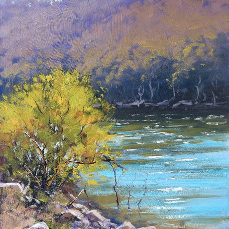 (CreativeWork) Lake Lyell shoreline Lithgow by Graham Gercken. Oil Paint. Shop online at Bluethumb.