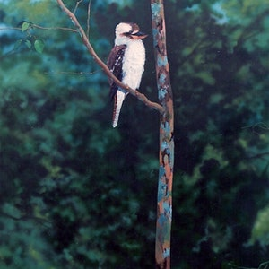 (CreativeWork) Young Kookaburra by Paul Drought. arcylic-painting. Shop online at Bluethumb.