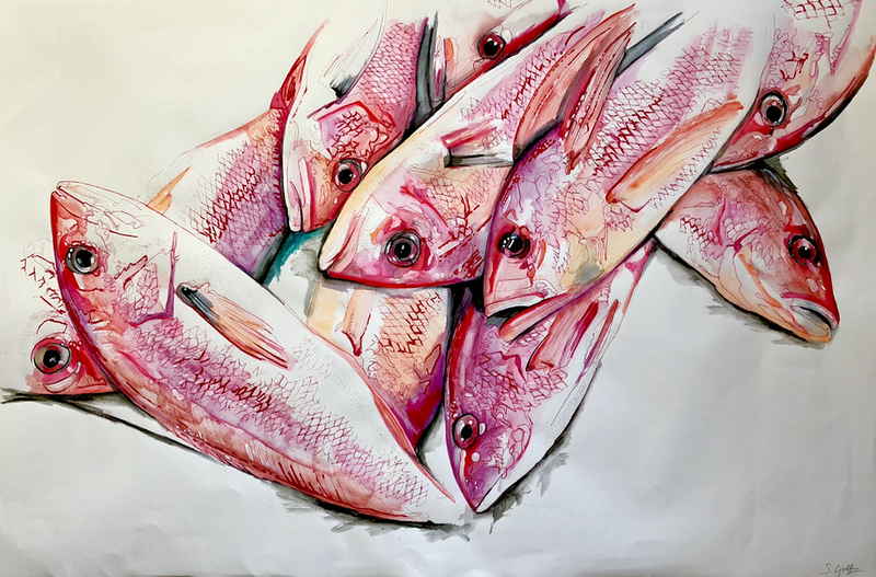 (CreativeWork) Florida Snappers by Silvia Rubboli Golf. drawing. Shop online at Bluethumb.