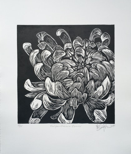 Chrysanthemum flower, linocut print  Ed. 3 of 10