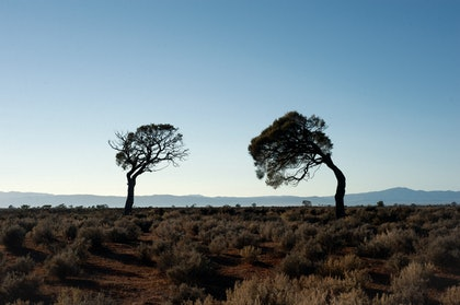 (CreativeWork) Desert Air (ii) by Alex Frayne. photograph. Shop online at Bluethumb.
