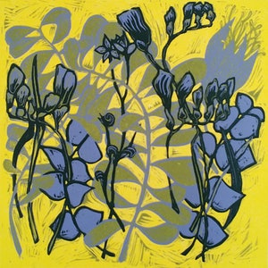 (CreativeWork) Pressed Flowers Ed. 1 of 4 by Nicola Cowie. print. Shop online at Bluethumb.