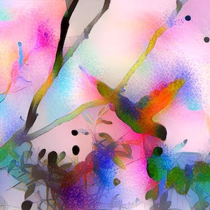 (CreativeWork) Treetop Dreaming - Rosella Ed. 1 of 10 by Wendy Goodwin. print. Shop online at Bluethumb.