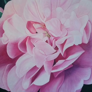 (CreativeWork) Bloom by Tracey Hall. oil-painting. Shop online at Bluethumb.