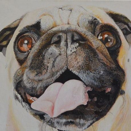 (CreativeWork) Pug by Christopher O'Hare. Acrylic Paint. Shop online at Bluethumb.