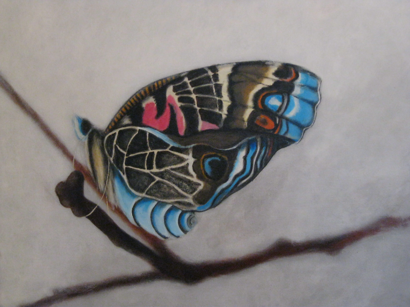 (CreativeWork) Flutterby by Maureen McManamny. arcylic-painting. Shop online at Bluethumb.