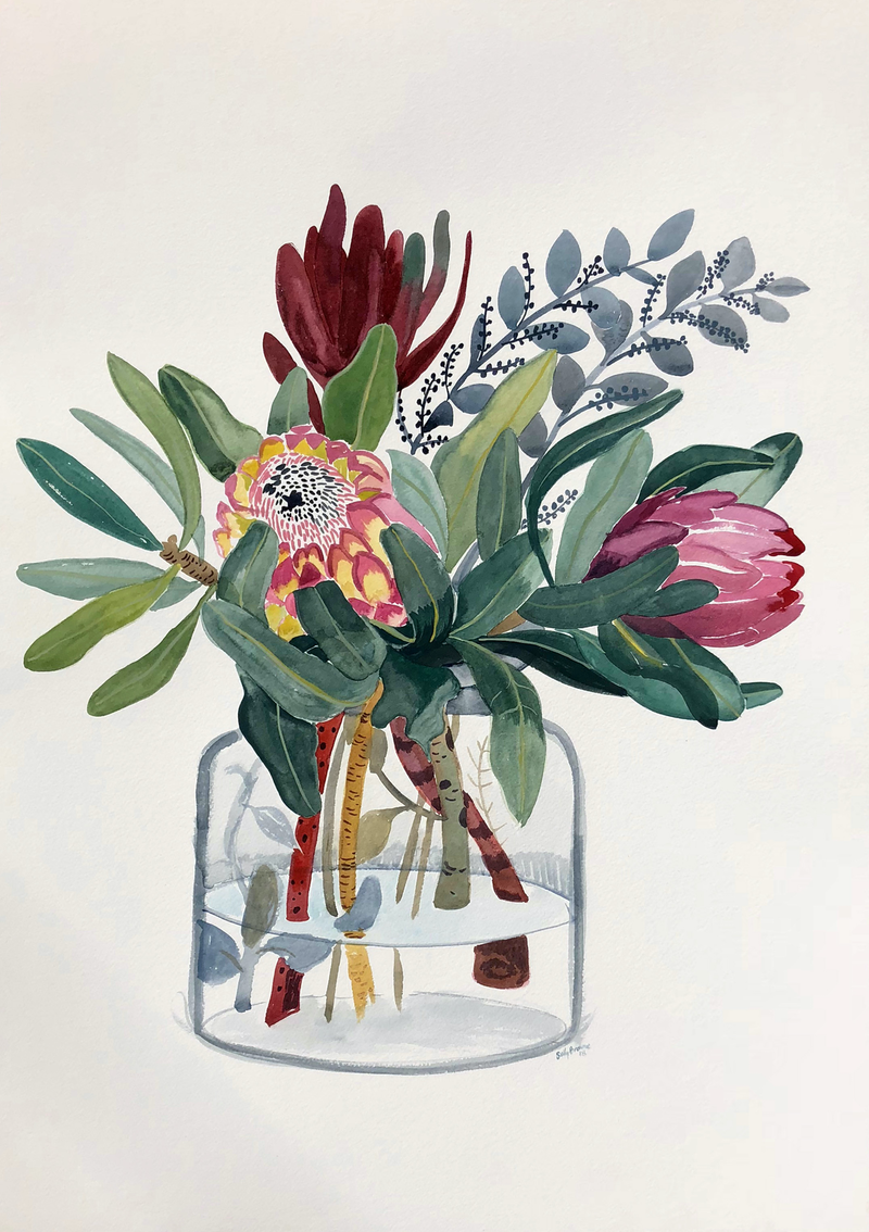 (CreativeWork) Proteas in Glass Jar by Sally Browne. watercolour. Shop online at Bluethumb.