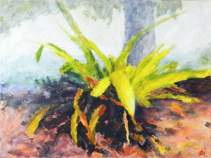 (CreativeWork) Bromeliad by Anne Huth. arcylic-painting. Shop online at Bluethumb.